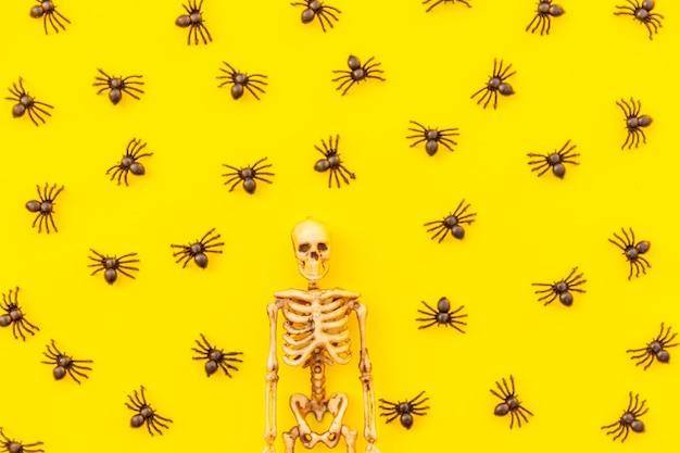 Composition de décorations minimales d'halloween avec de nombreuses araignées noires et squelette isolé sur fond jaune ...