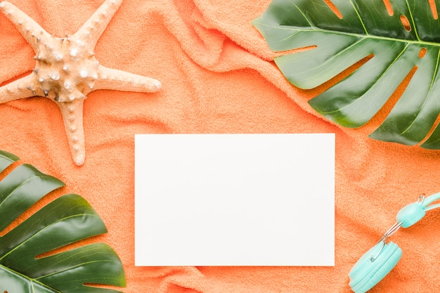 Composition du casque et des feuilles d'étoile de mer en papier blanc