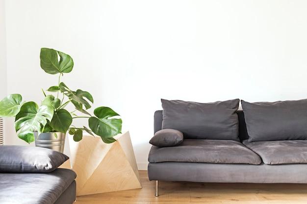 Composition élégante d'un intérieur de salon spacieux et créatif avec canapés, fauteuil, table basse, plantes et accessoires. murs neutres.