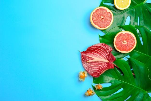 Composition estivale avec des feuilles de monstera fraîches, des fleurs tropicales et des fruits sur une surface de couleur