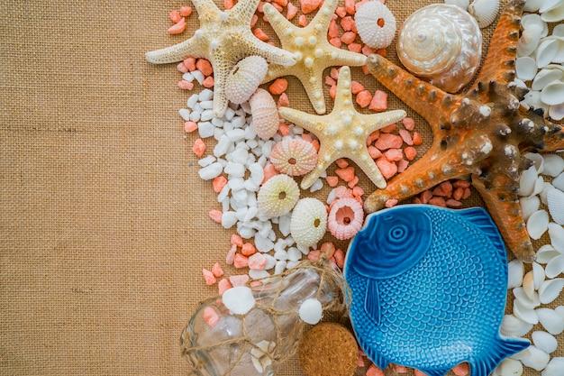 Composition d'été avec des coquilles décoratives et des étoiles de mer