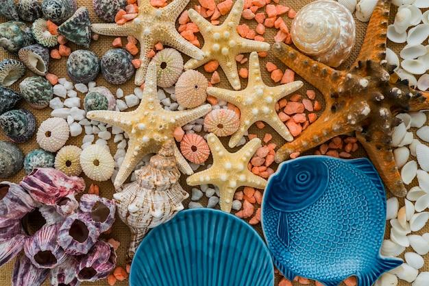 Composition fantastique de l'été avec une variété d'éléments marins