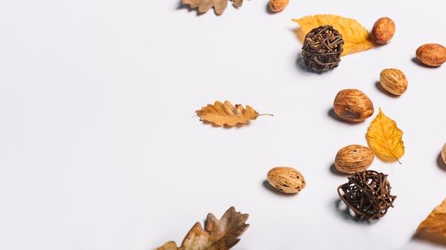 Composition de feuilles d'automne et d'amandes de pêche