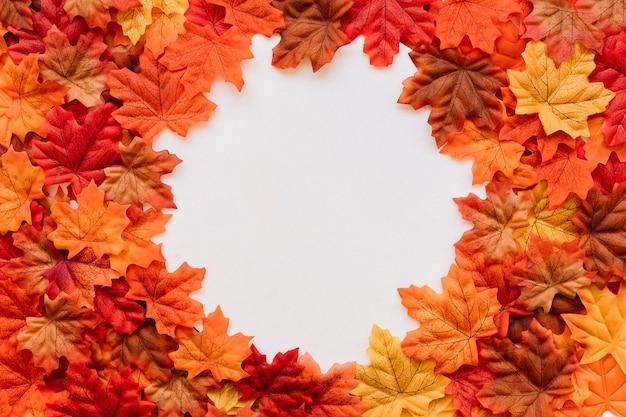 Composition de feuilles d'automne avec cadre de bords naturels