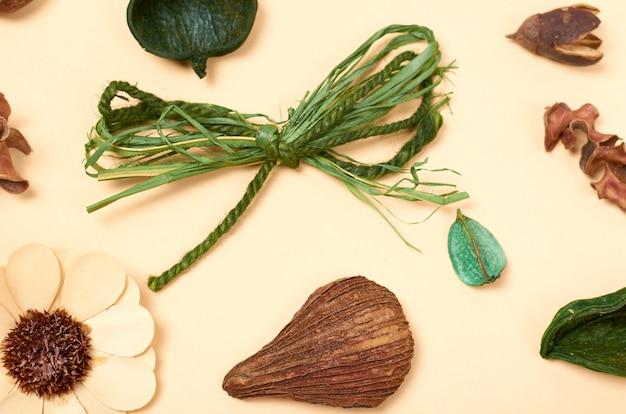 Composition des feuilles. fond de concept de nature. photo vue de dessus et à plat