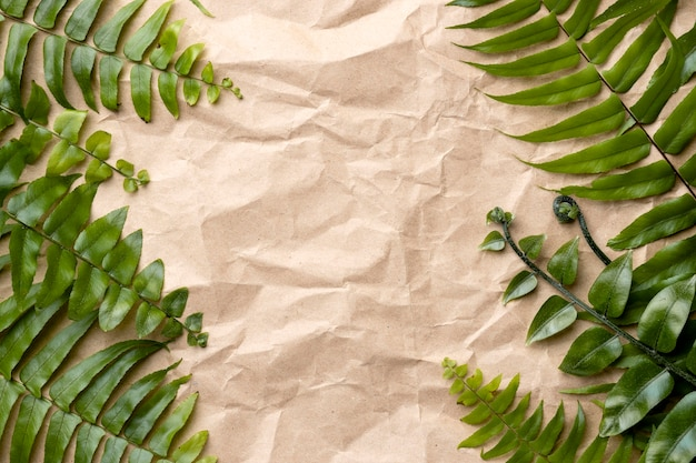 Composition de feuilles vertes avec espace copie