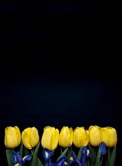 Composition de fleurs. cadre fait de tulipes jaunes et d'iris sur fond bleu. concept de la saint-valentin, de la fête des mères et de la fête des femmes. mise à plat, format vertical.