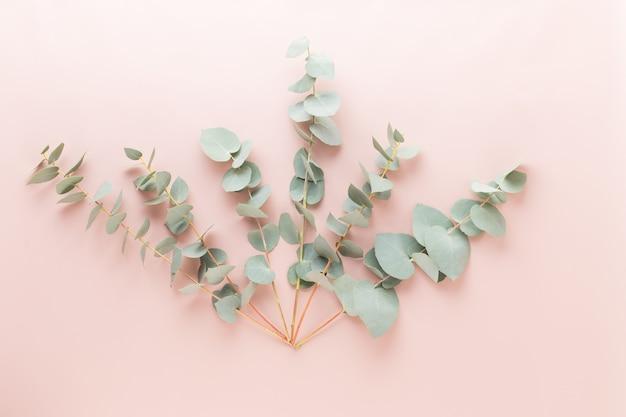 Composition de fleurs et d'eucaaliptus. modèle composé de diverses fleurs colorées sur blanc plat la vie toujours.
