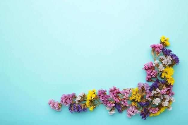 Composition de fleurs. fleurs de gypsophile sur fond bleu pastel. mise à plat, vue de dessus, espace de copie. printemps