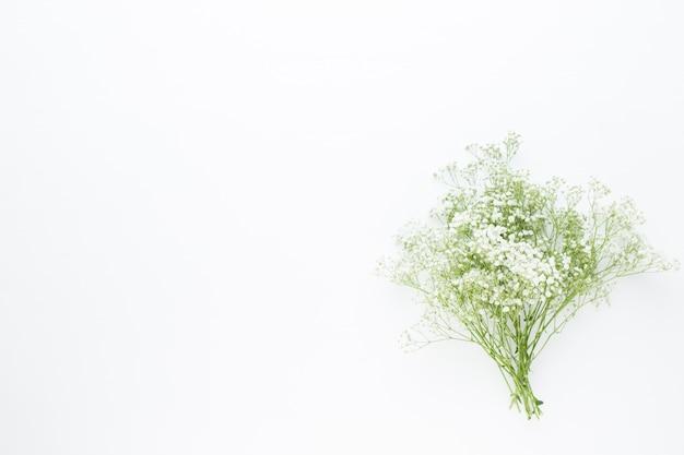 Composition de fleurs. fleurs de gypsophile sur fond rose pastel. mise à plat, vue de dessus, espace copie