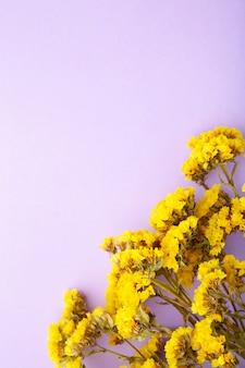 Composition de fleurs. fleurs de gypsophile. mise à plat, vue de dessus, espace de copie.
