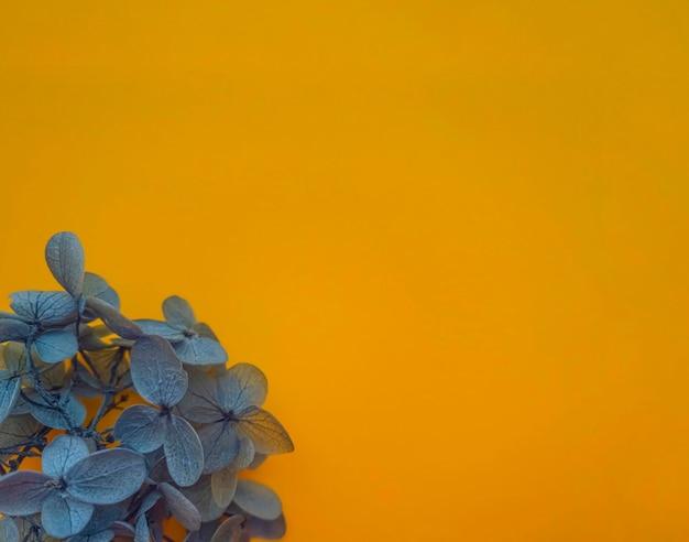 Composition de fleurs de fleurs d'hortensia couleur gris ultime sur fond lumineux. couleurs de l'année 2021, printemps, modèle d'été pour vos projets.