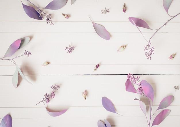 Composition de fleurs. modèle composé de fleurs roses et de branches d'eucalyptus sur le blanc, vue de dessus.