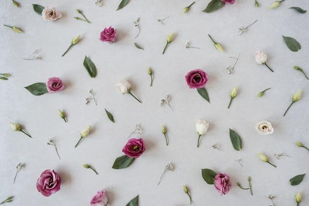 Composition de fleurs avec de nombreuses roses sur gris