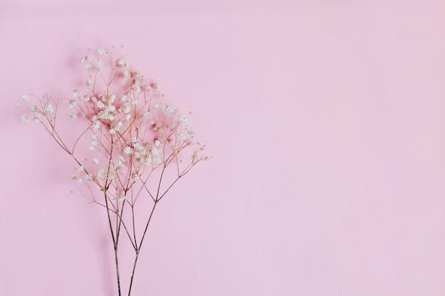 Composition de fleurs séchées sur table rose. copiez l'espace. vue de dessus.