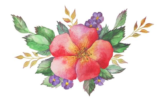 Composition florale aquarelle. jardin de nature de bouquet de fleurs de floraison de ressort. plantes de brosse dessinées à la main vintage isolées sur illustration blanche.