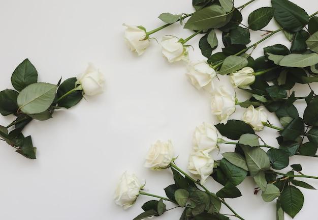 Composition florale élégante avec des roses blanches et place pour le texte sur fond blanc