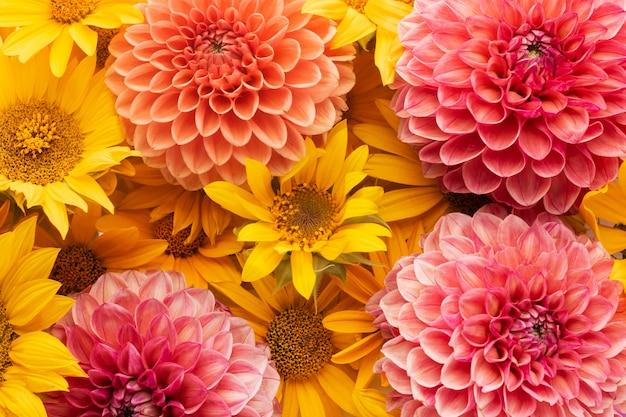 Composition de fond de belles fleurs
