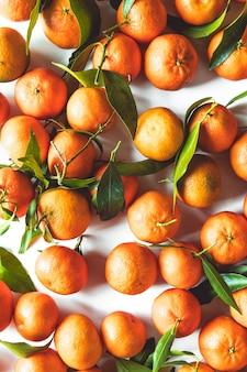 Composition de fruits oranges avec des feuilles vertes et tranche sur fond de bois blanc, vue du dessus