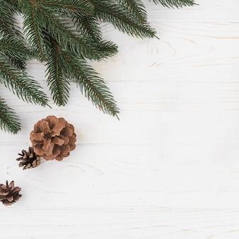 Composition d'hiver d'une branche de sapin