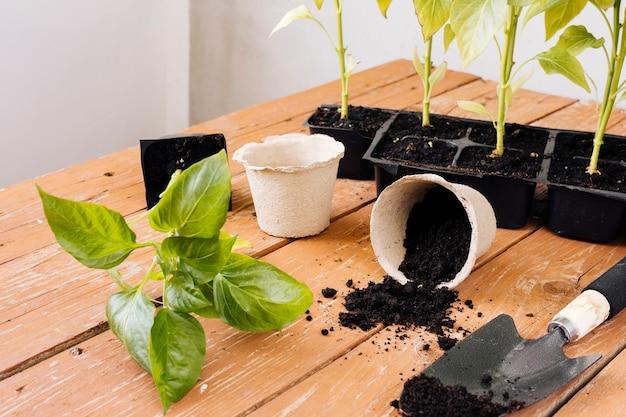 Composition de jardinage sur la table