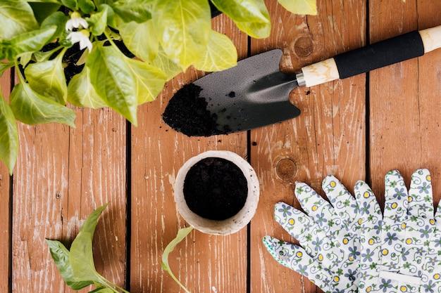 Composition de jardinage vue de dessus