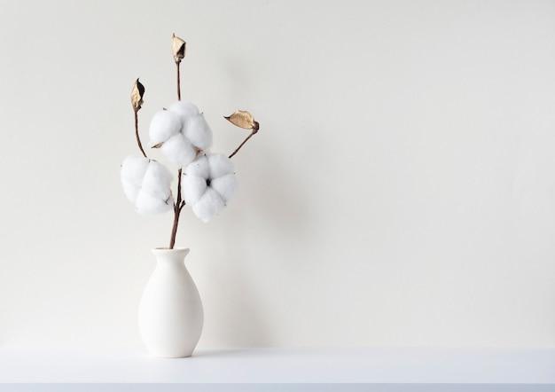 Composition minimale avec branche de fleur de coton séchée en vasa dans une pièce vide aux murs beiges, maquette, espace pour le texte