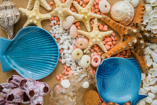 Composition de la nature avec des éléments marins