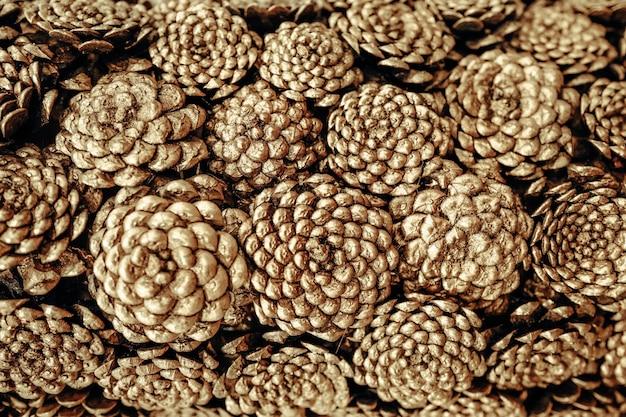 Composition de noël composée de cônes dorés.