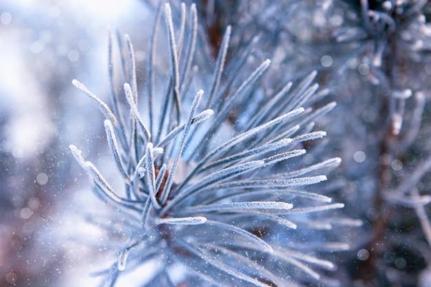 Composition de noël ou du nouvel an. jouets de noël sur l'épicéa. flocons de neige et éblouissement