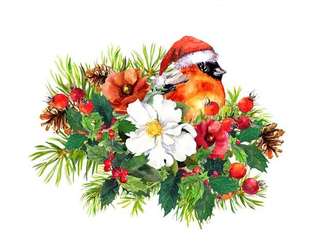 Composition de noël - oiseau pinson, fleurs d'hiver, épinette, gui. aquarelle