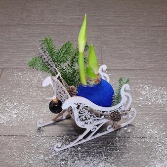 Composition de noël en traîneau décoratif avec branches de pin, cônes, boule et bulbe d'amaryllis bleu. photo en gros plan. sur fond sombre couvert de neige