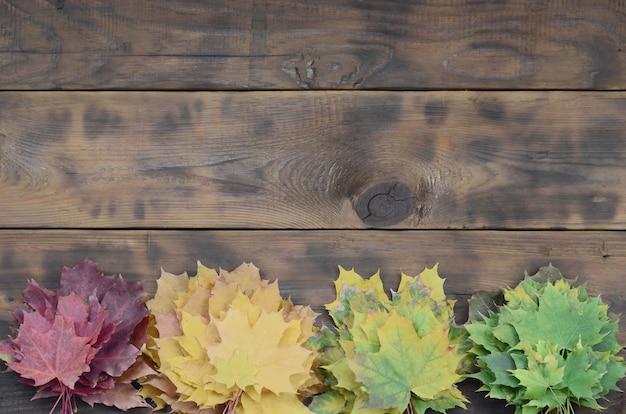 Composition de nombreuses feuilles d'automne tombées jaunies