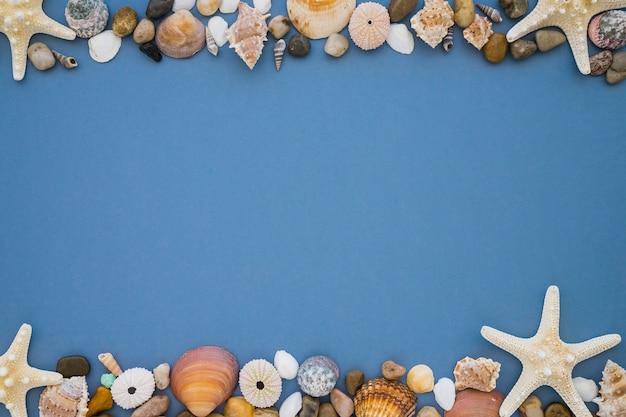 Composition avec des objets marins sur la surface bleue