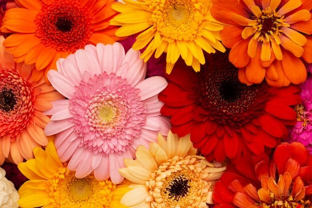 Composition de papier peint de belles fleurs