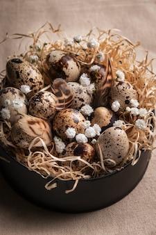 Composition de pâques des oeufs de caille de pâques dans le nid sur fond clair.