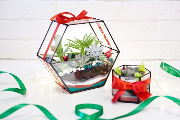Composition de plantes succulentes, pierre, sable et verre