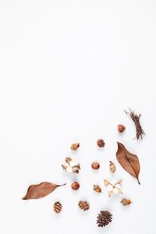 Composition à plat d'automne avec des cônes et des feuilles