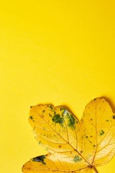 Composition à plat d'automne avec des feuilles réalistes sur fond orange bonjour octobre automne