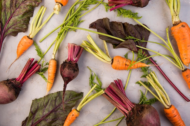 Composition à plat de différents légumes