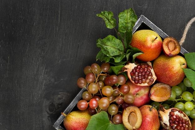 Composition à plat de fruits d'automne avec espace copie
