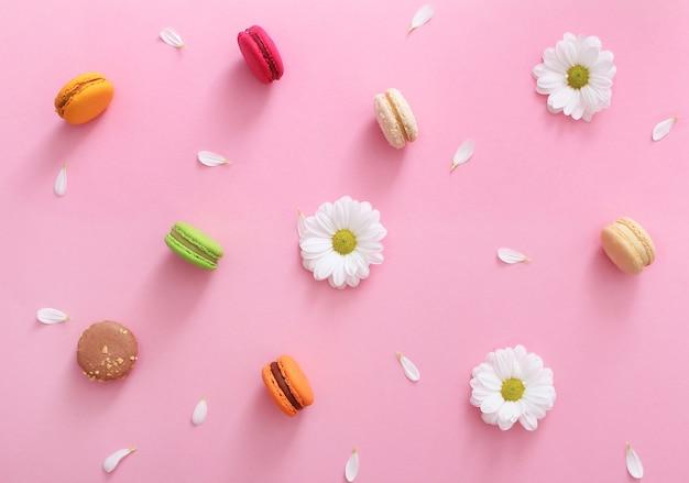 Composition à plat de macarons français colorés, fleurs blanches et pétales