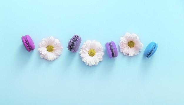 Composition à plat de macarons français colorés et fleurs blanches