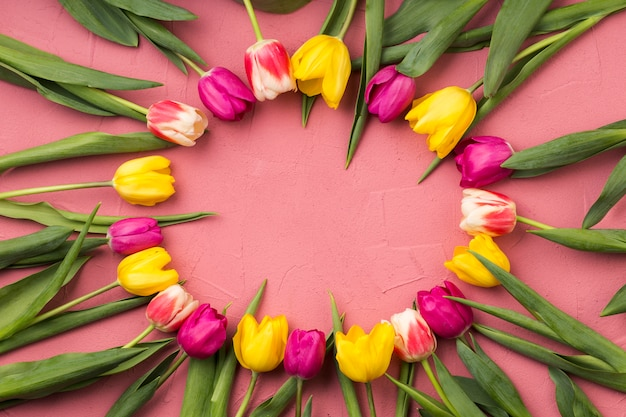 Composition plate de fleurs avec concept de cadre
