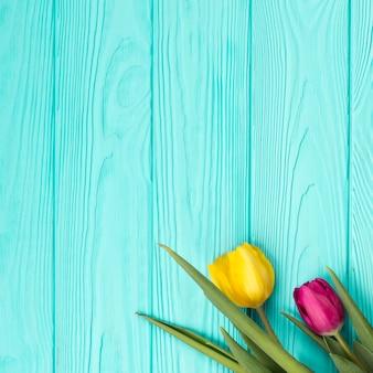 Composition plate de fleurs avec fond