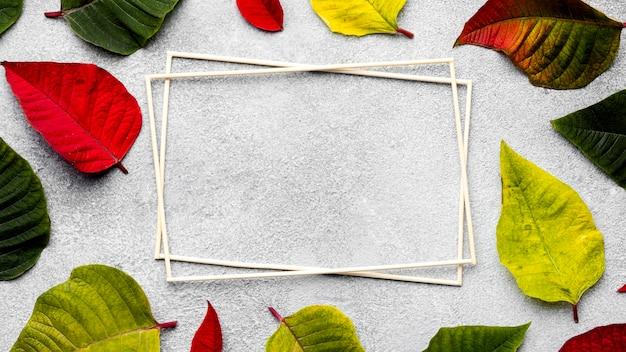 Composition plate laïque de feuilles colorées avec des cadres vides