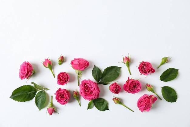 Composition plate avec roses et pétales