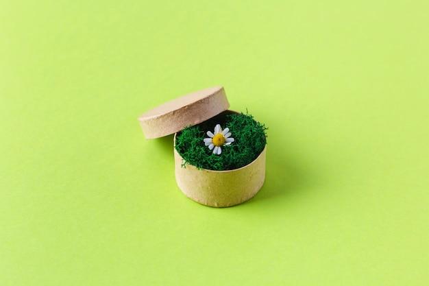 Composition de printemps avec boîte et fleurs. 8 mars. vue de dessus