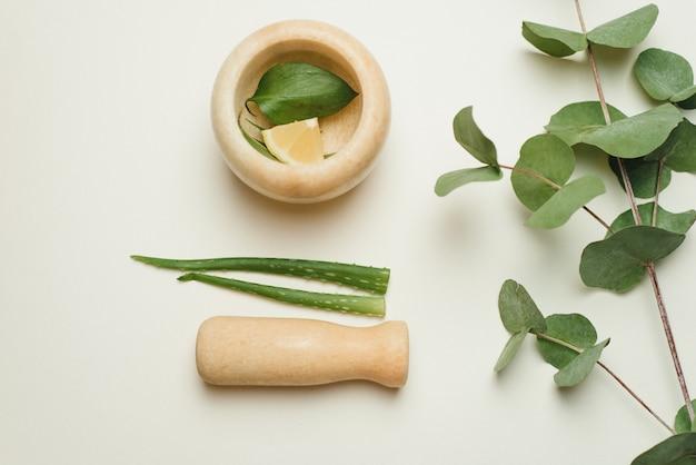 Composition avec des produits cosmétiques, aloe vera, mortier et feuilles