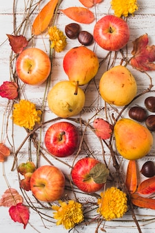 Composition de récolte colorée automne vue de dessus